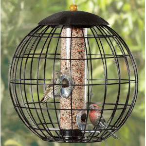Bird Feeders & Nest Boxes