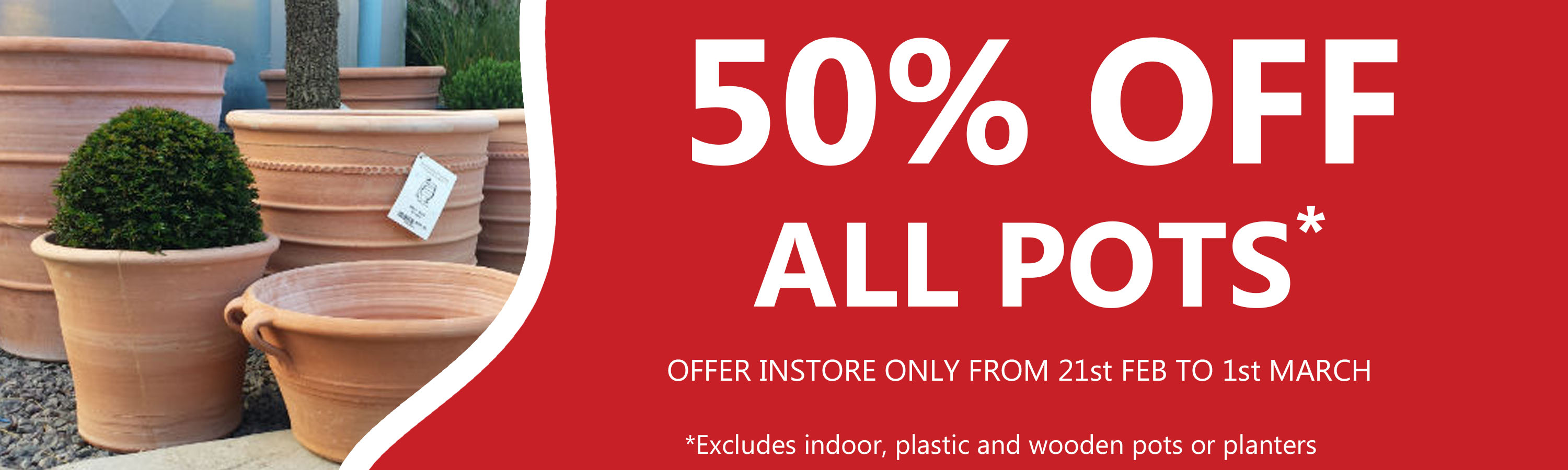 50% off all pots in store